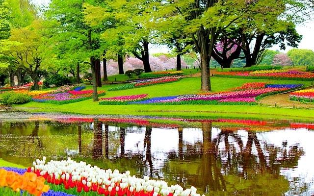 Bloemenpark Keukenhof in Lisse