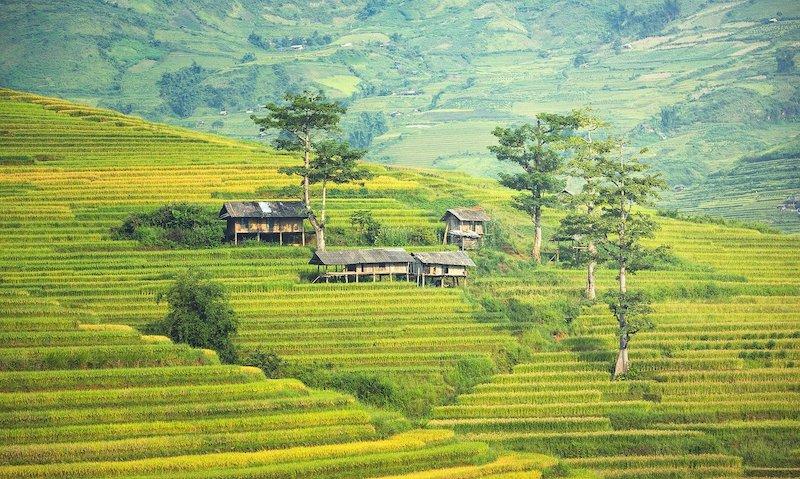 Dit is waarom er zoveel mensen op vakantie gaan naar Bali