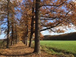 Nationaal Park de Utrechtse Heuvelrug